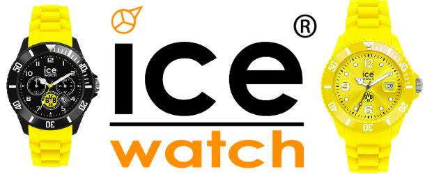 Titelbild - Ice-Watch BVB 2012